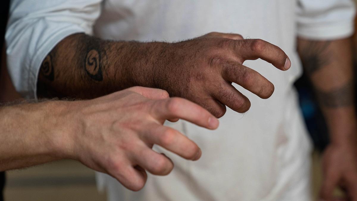 demon hands monkey kung fu